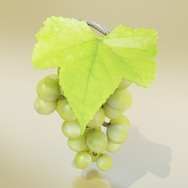 green grapes high detail 3d model 3ds max fbx obj 133019