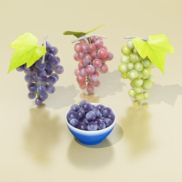 3D Model Grapes Collection High Detailed ( 47.33KB jpg by VKModels )