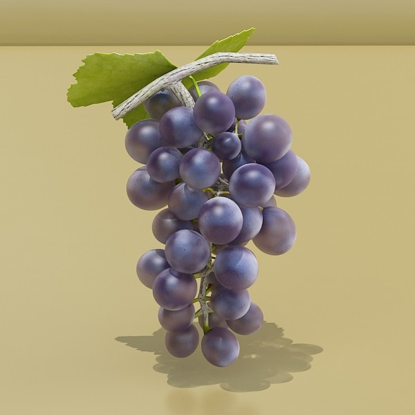 3D Model Grapes Collection High Detailed ( 39.51KB jpg by VKModels )