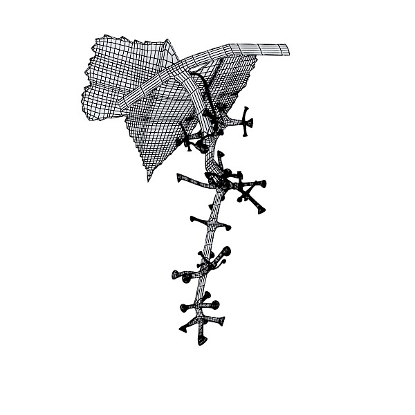3D Model Green Grapes in Glass Bowl ( 40.91KB jpg by VKModels )