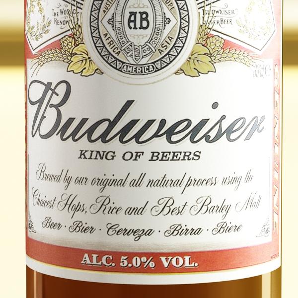 budweiser beer bottle – six cardboard pack 3d model 3ds max fbx obj 142144