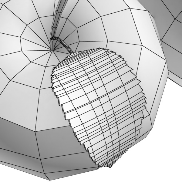fruits collection high res textures 17 3d model 3ds max fbx obj 133244
