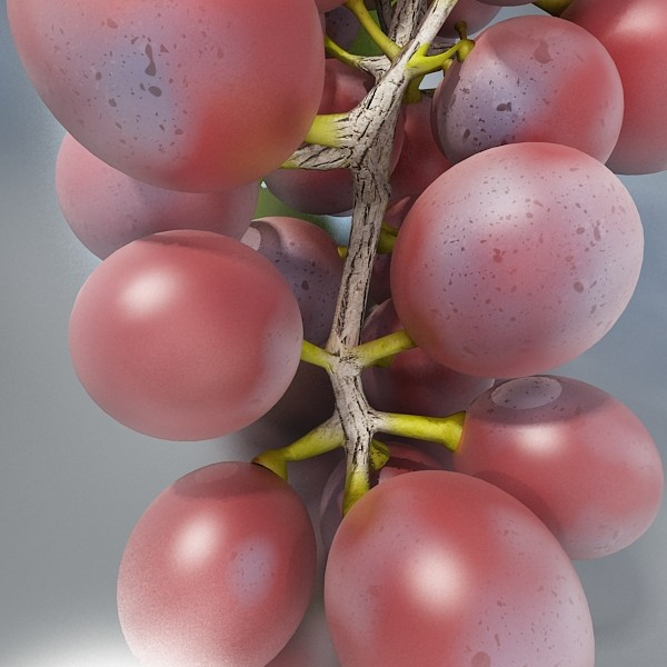red grapes high detail 3d model 3ds max fbx obj 133026
