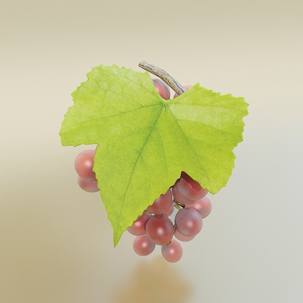 red grapes high detail 3d model 3ds max fbx obj 133030