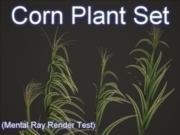 corn plant set 001 3d model 3ds max obj 103187
