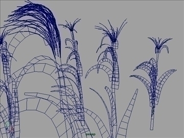 corn plant set 001 3d model 3ds max obj 103192