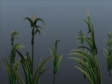 corn silk grass set 001 3d model 3ds max obj 103060