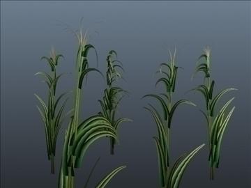 corn silk grass set 001 3d model 3ds max obj 103061