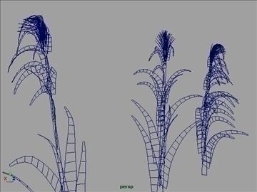 corn silk grass set 001 3d model 3ds max obj 103063