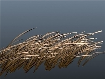 dry grass set 001 3d model 3ds max obj 103105