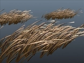 dry grass set 001 3d model 3ds max obj 103106