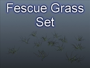 fescue grass set 001 3d model 3ds max obj 103122