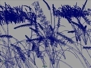 field grass set 001 3d model 3ds max obj 103071