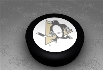 official nhl hockey puck 3d model 3ds c4d texture 109120