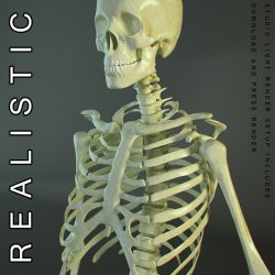 HD Skeleton of a Human ( 322.96KB jpg by 5starsModels )