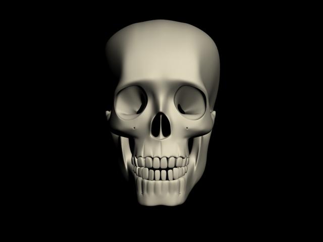 human skull 3d model max 113874