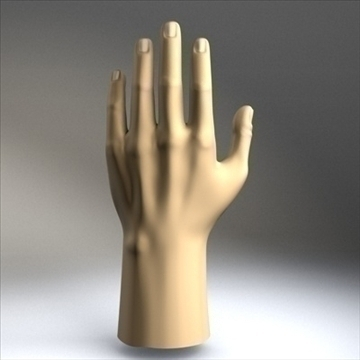 male hand 3d model 3ds dxf fbx c4d x obj 88999