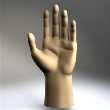 male hand 3d model 3ds dxf fbx c4d x obj 89003