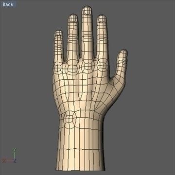 male hand 3d model 3ds dxf fbx c4d x obj 89006