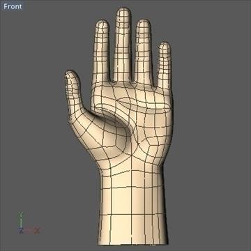 male hand 3d model 3ds dxf fbx c4d x obj 89007