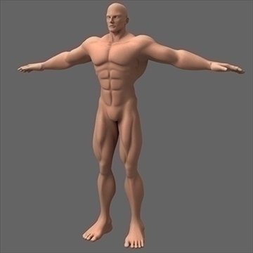 male superhero 3d model c4d lwo obj 89562