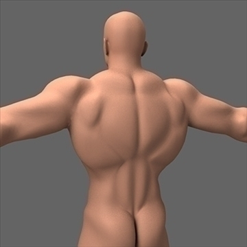 male superhero 3d model c4d lwo obj 89566