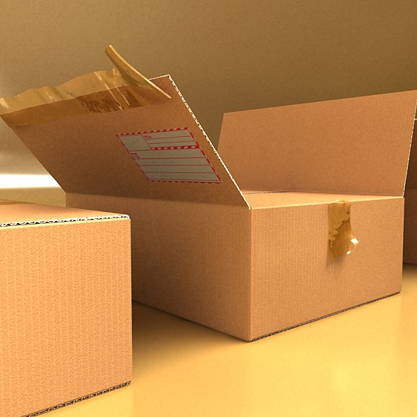 cardboard box with tape & mailing label 3d model 3ds max fbx psd obj 130212