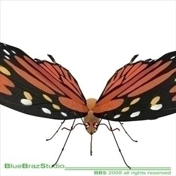 butterfly cartoon 3d model 3ds dxf c4d obj 93305