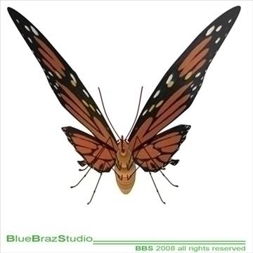 butterfly cartoon 3d model 3ds dxf c4d obj 93306