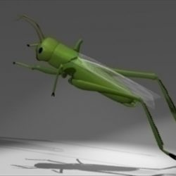 Grasshopper ( 30.85KB jpg by epicsoftware )
