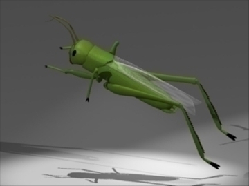 grasshopper 3d model 3ds dxf lwo 80689