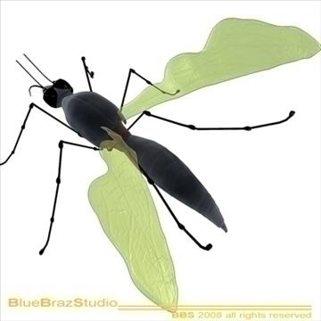 mosquito cartoon 3d model 3ds dxf c4d obj 109939