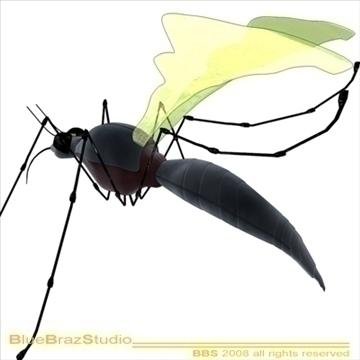 mosquito cartoon 3d model 3ds dxf c4d obj 109940