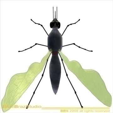 mosquito cartoon 3d model 3ds dxf c4d obj 109941