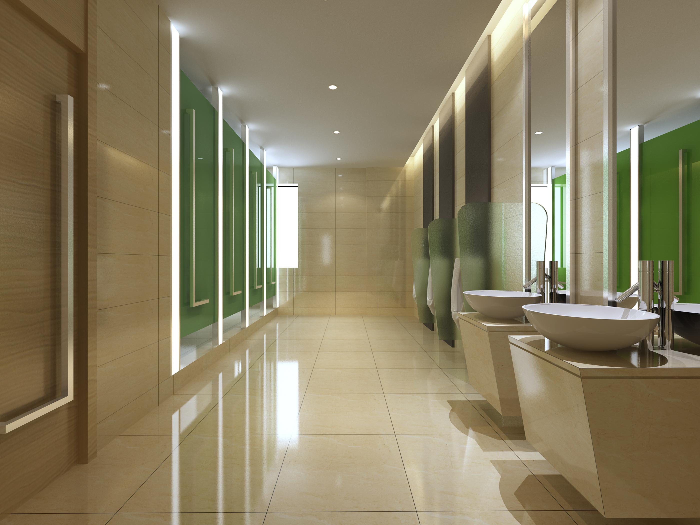 Contemporary Luxury Public Bathroom Design Ideas ~ Public toilet d model buy