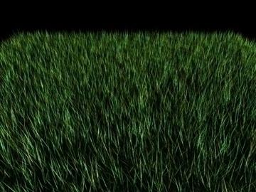 трава 3d модель max 111884