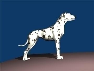 model model 3d dalmatian yn cydweddu ag ob