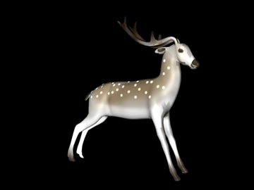 deer two 3d model 3ds c4d obj 100837