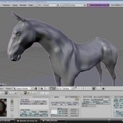 horse ( 58.31KB jpg by vivekc )