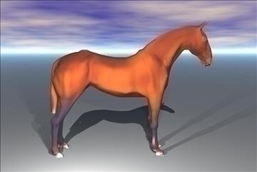 horse v3 3d model max 91707