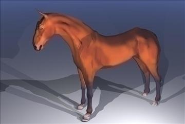 horse v3 3d model max 91706