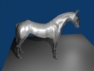 horse v3 3d model max 91710