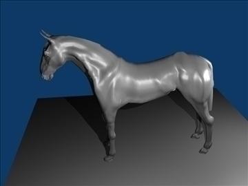 horse v3 3d model max 91711
