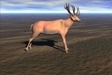 red deer 3d model max blend 91417