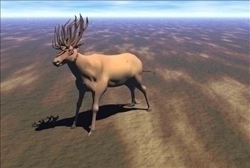 red deer 3d model max blend 91418
