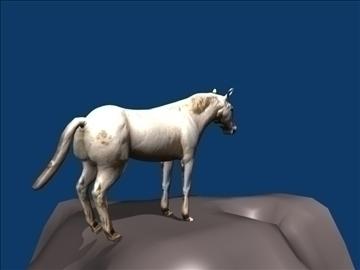 white horse 3d model blend 108607