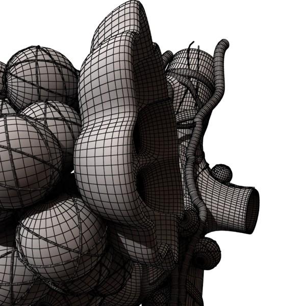 alveolių anatomija 3d modelis max fbx obj 132329