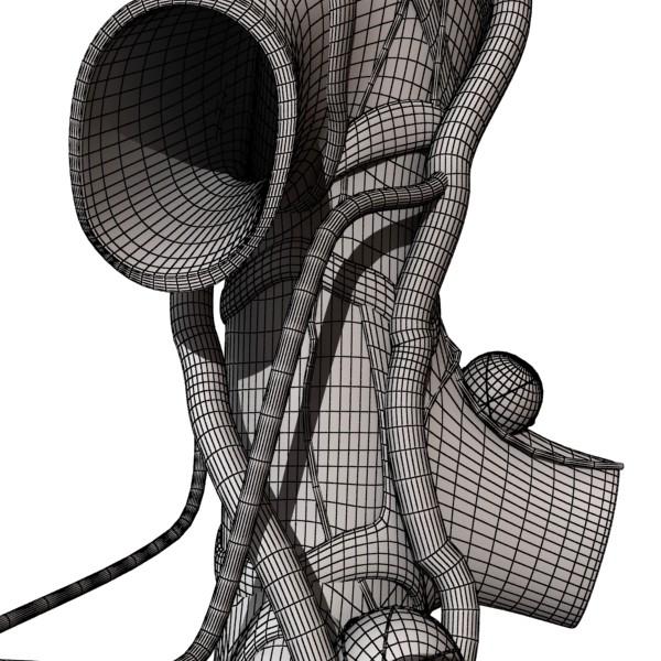 alveolių anatomija 3d modelis max fbx obj 132330