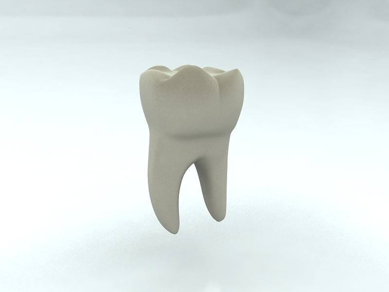 tooth 3d model max 150311