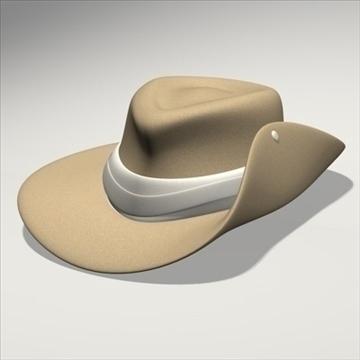 australian hat.zip 3d model 3ds dxf fbx c4d x obj 93231